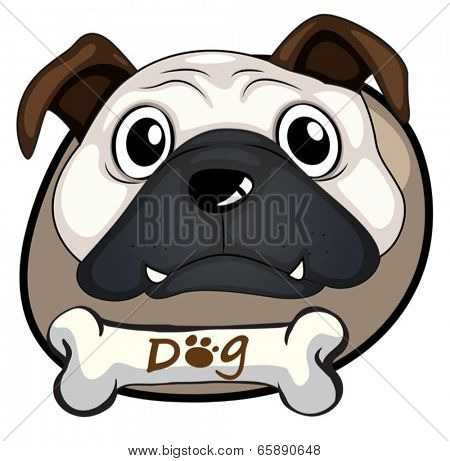 Illustration of a head of a bulldog on a white background