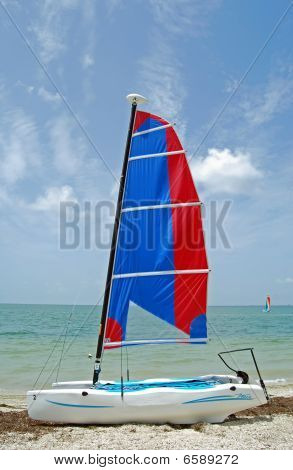 Small Catamaran With Blue and Red Sails