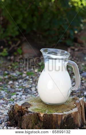 Jug Of Milk On A Stump