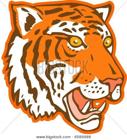 tiger head facing side view