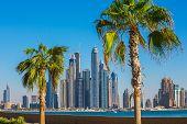 foto of dubai  - DUBAI UAE  - JPG