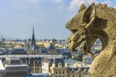 picture of gargoyles  - Gargoyle statue with paris aerial view in the background from Notre - JPG