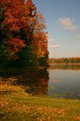 Autumn's Colors poster