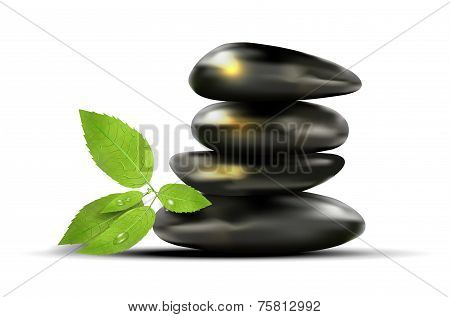 Black Stones And Green Leafs With Dew-drops