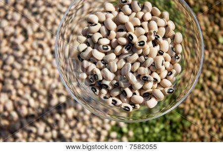 Glass With Black-eyed Beans