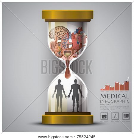 Sandglass Health And Medical Human Organ Infographic