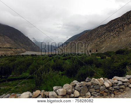 Green Fields In Dry Himalayas