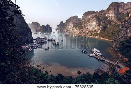 Tourist Junks in Halong Bay