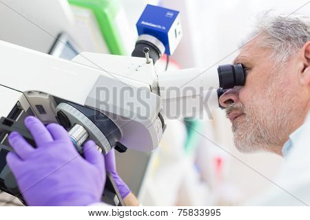 Senior scientist  microscoping in lab.