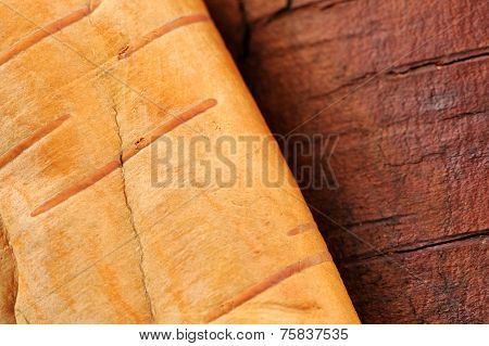 Birch Log And Bark