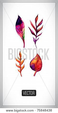 Vector set of autumn leaves painting traces. Set of  watercolor