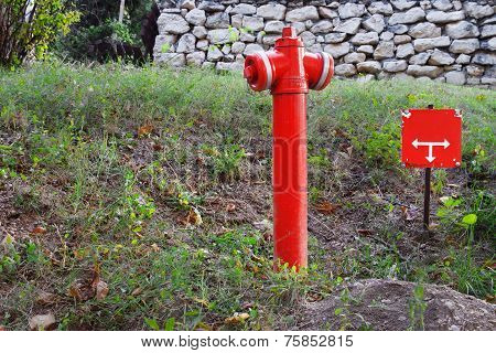 Fire Hydrant In City Park Area