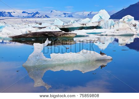 Ocean ice lagoon J���¶kuls���¡rl���³n. Azure ice  reflected in cold smooth water