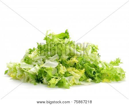 a pile of chopped escarole endive on a white background