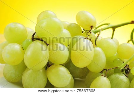 closeup of bunch of appetizing table grapes