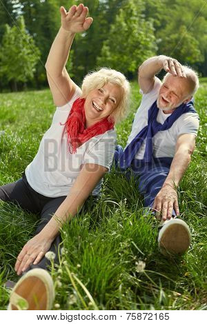 Two happy senior people doing gymnastics and stretching in nature in summer