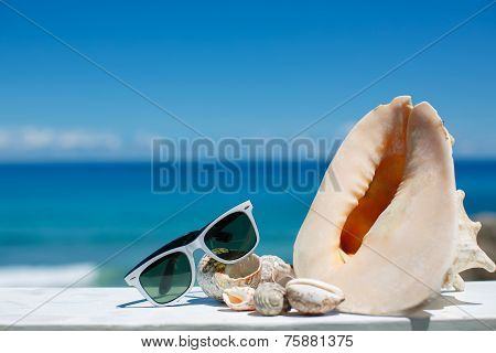 sun glasses and seashells on the beach