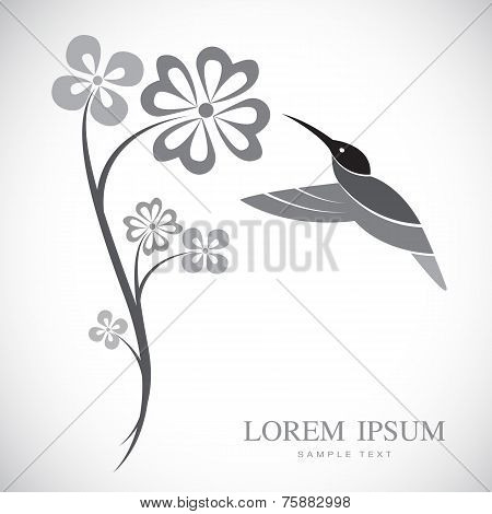 Vector Design Of Hummingbird And Flowers