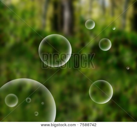 Abstract Bubble In Nature