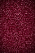 picture of stingray  - A closeup of a red stingray skin texture - JPG