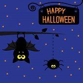 pic of bat wings  - Hanging bat and spider - JPG