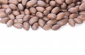 picture of pecan  - brown unshelled pecan nuts with copy space - JPG