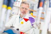 image of microorganisms  - Life scientist researching in laboratory - JPG