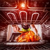 pic of oven  - Housewife prepares roast chicken in the oven - JPG