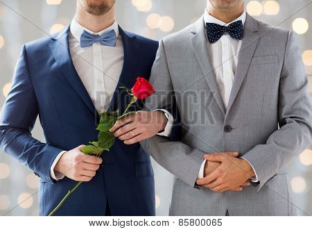 people, homosexuality, same-sex marriage and love concept - close up of happy male gay couple with red rose flower holding hands on wedding  over holidays lights background