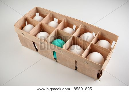 Pack Of Ten White Eggs With One Blue