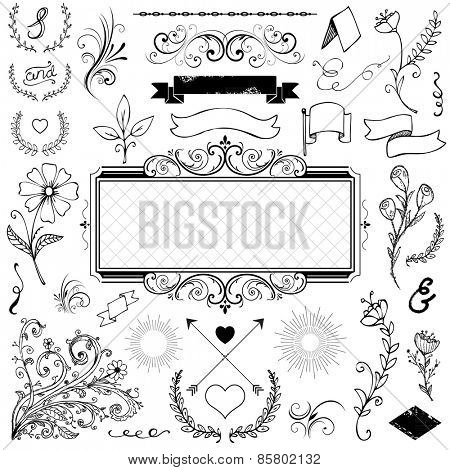 calligraphic design elements and page decoration for wedding or menu