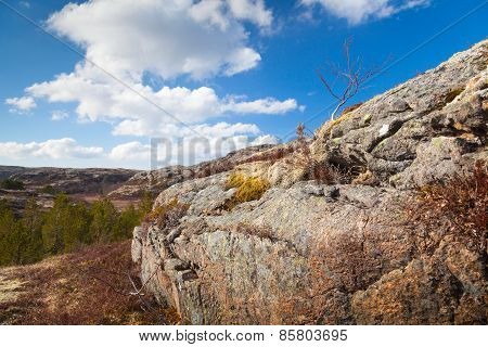 Norwegian Spring Landscape With Trees On Mountains