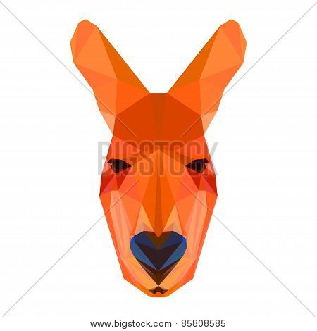 Bright Colored Abstract Polygonal Geometric Kangaroo Isolated On White
