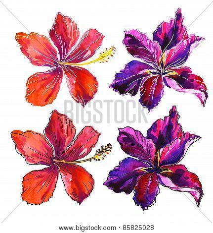 Watercolor Garden Floral Elements