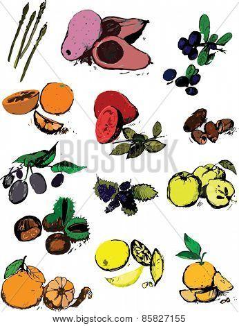 Lot of fruits set