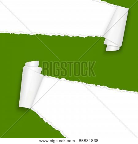 Ripped Open Paper Green