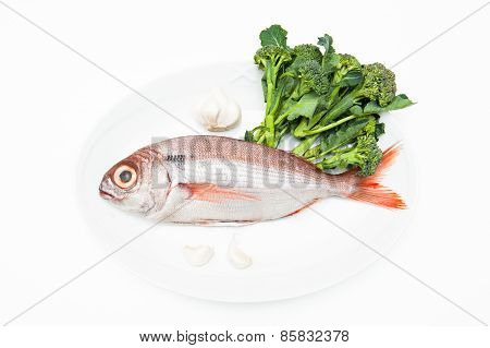 Pezzogna Fish, Variety Of Sea Bream, With Spice White Background