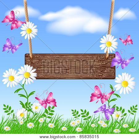 Signboard On The Meadow With Daisies