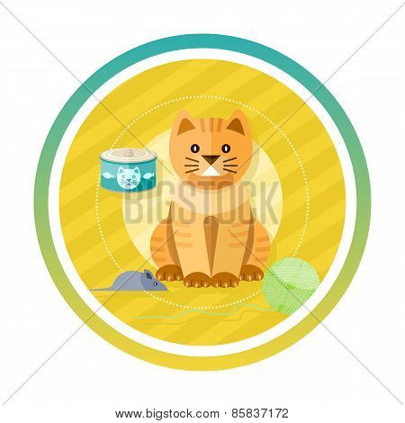 Adorable cat with different toys and elements