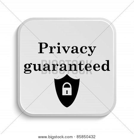 Privacy Guaranteed Icon