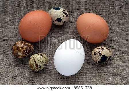Different types of eggs on hessian linen fabric cloth texture background