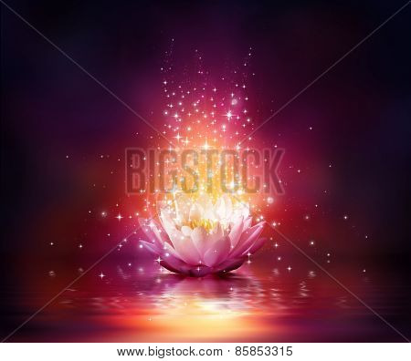magic flower on water