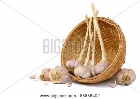 Garlics In Bamboo Basket On White Background