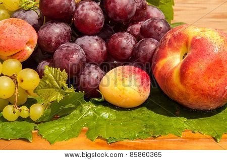 Grapes And Apricots