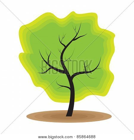 Green Tree Nature Ecology
