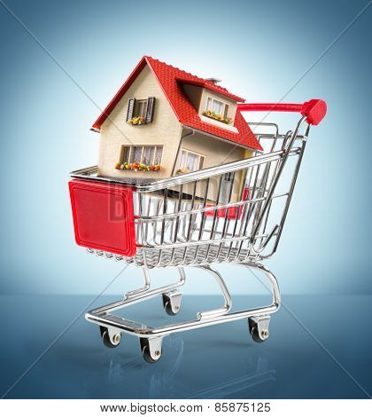 house in shopping-cart - in blue