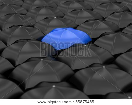 Unique Blue Umbrella