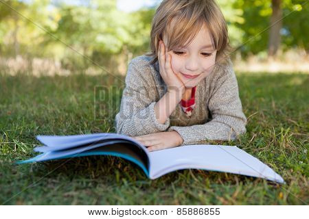 Cute little boy reading in park on a sunny day