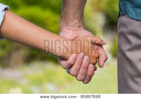 Father and son holding hands in the countryside