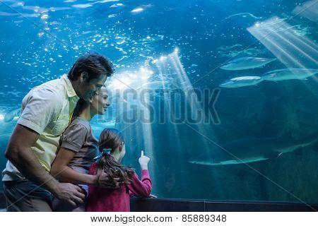 Happy family looking at tank at the aquarium
